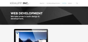 krauppinc best web firm web development services
