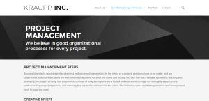 krauppinc best web firm project management