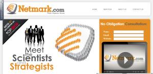 netmark expert web design firm homepage