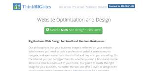 thinkbigsites high grade web design web optimatization services
