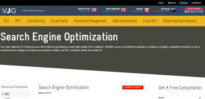 vjginteractive outstanding web design firm SEO