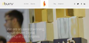 dburns optimum web design firm about us