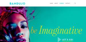 bandujo great custom web design homepage