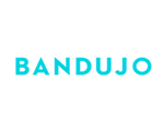 bandujo great custom web design logo