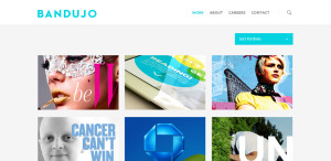 bandujo great custom web design work