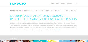 bandujo great custom web design services