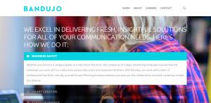 bandujo great custom web design process
