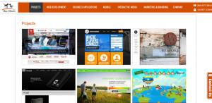 dog and rooster prime custom web design work