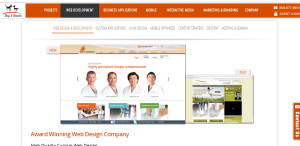 dog and rooster prime custom web design about us