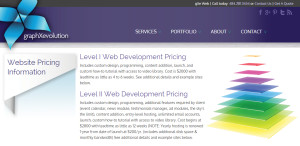 gxe expert custom web design pricing