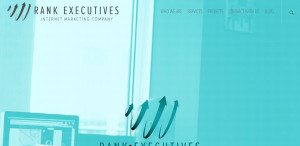 rankexecutives great web design firm team