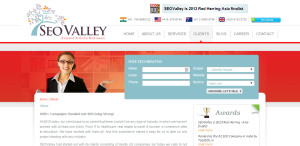 seo valley awesome seo web design clients
