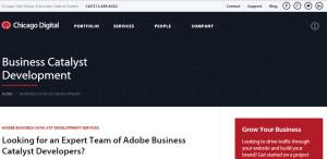 chicagodigital expert web design firm business catalyst development