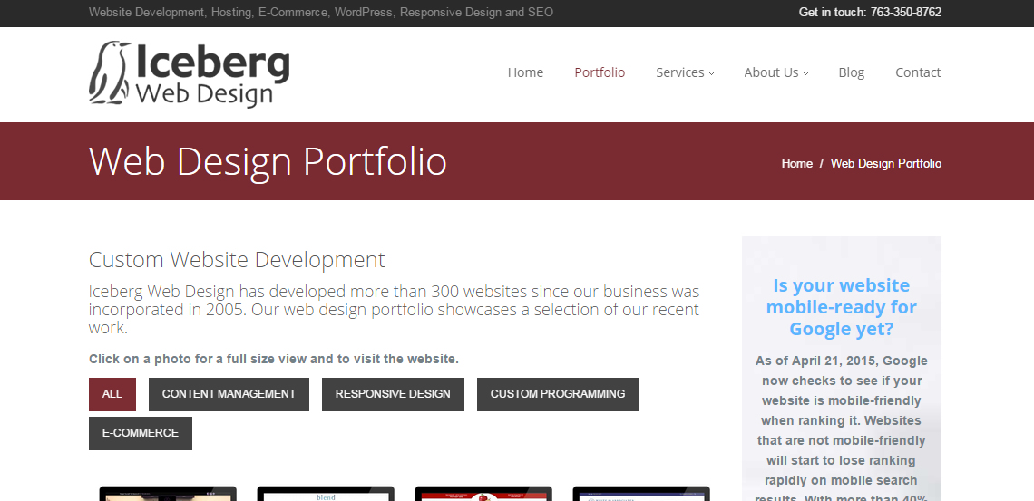 iceberg superb web design firm portfolio