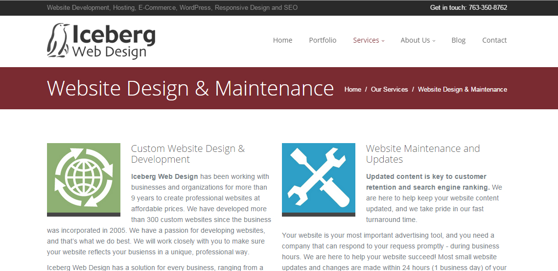 iceberg superb web design firm services