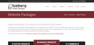 iceberg superb web design firm packages