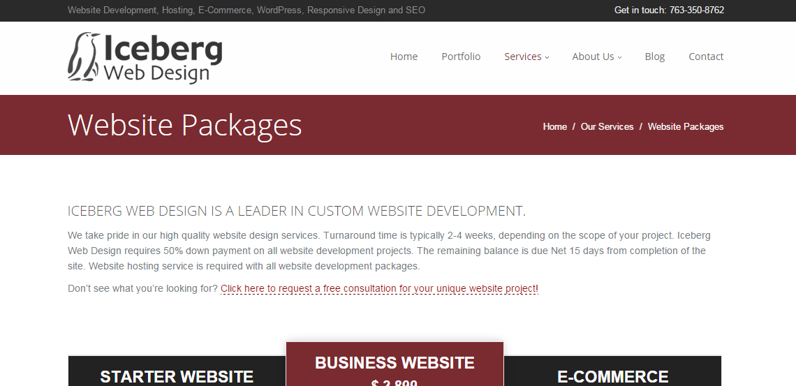 iceberg superb web design firm packages