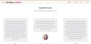 monkey coders elite web design testimonials