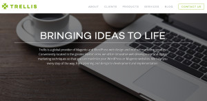 trellis_elite web design firm homepage