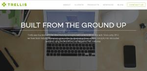 trellis_elite web design firm about us