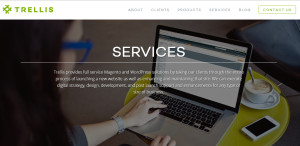trellis_elite web design firm services