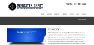 websitesdepot amazing web design firm about us