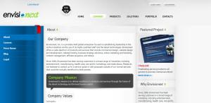envisionext expert web design firm company