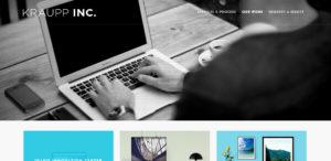 krauppinc best web firm work