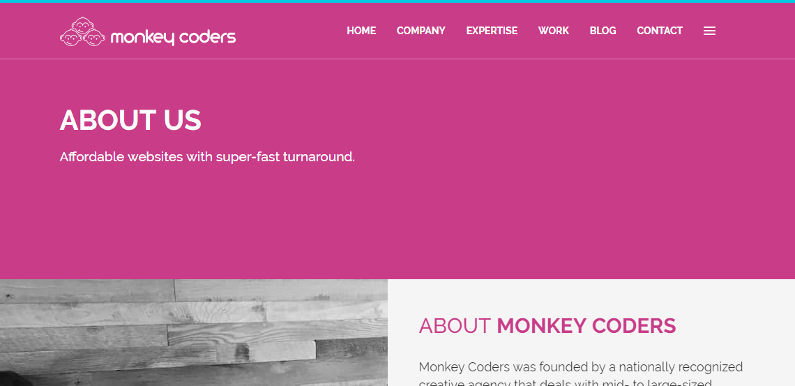 monkey coders elite web design about us