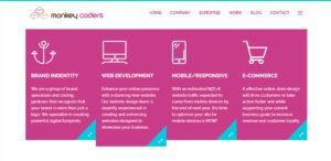 monkey coders elite web design expertise
