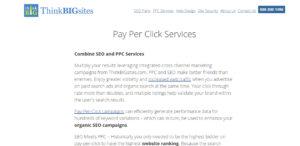 thinkbigsites high grade web design ppc