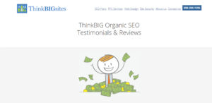 thinkbigsites high grade web design testimonials