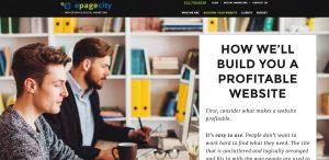 epagecity awesome web design firm process