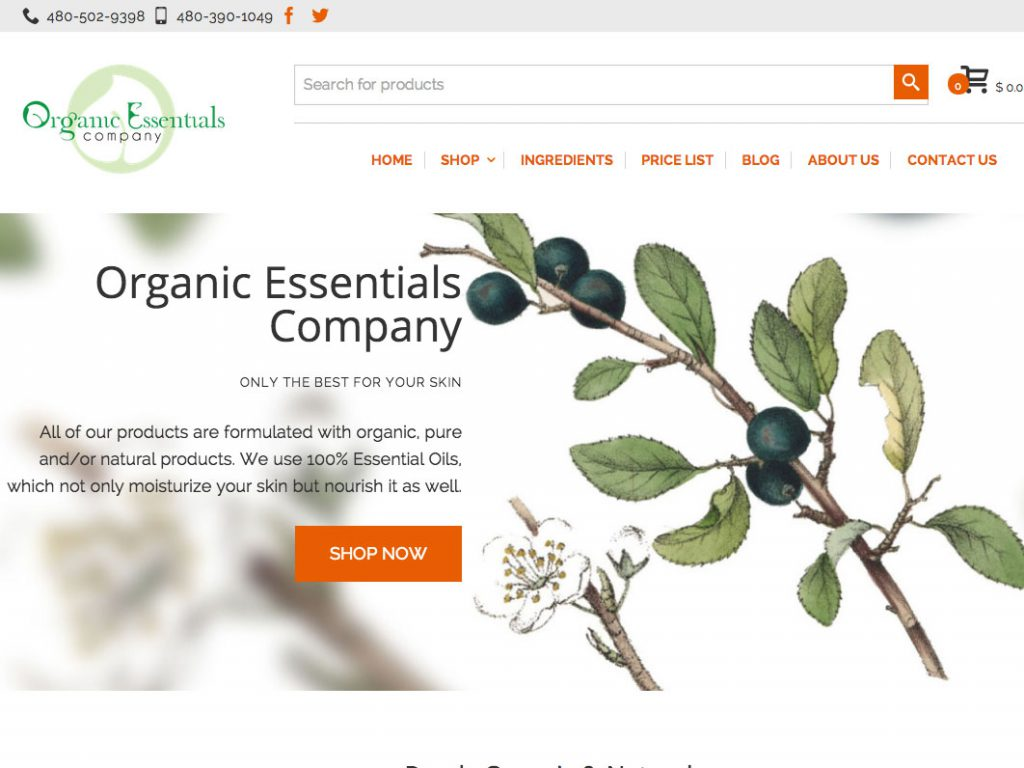 skin-care-website-ecommerce