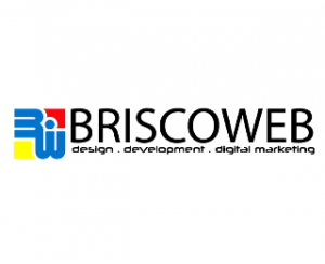 brisco great web design company