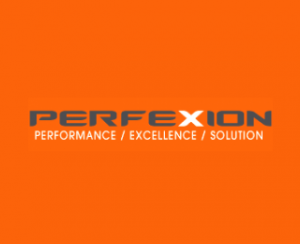 perfexion internet marketing company