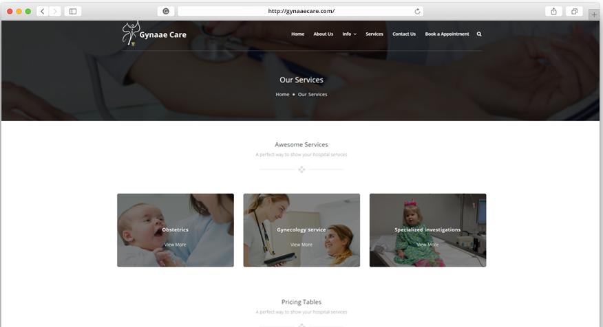 Gynaaecare portfolio