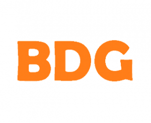 BDG Web Design Logo