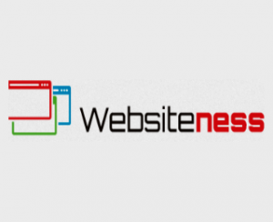 websiteness Logo