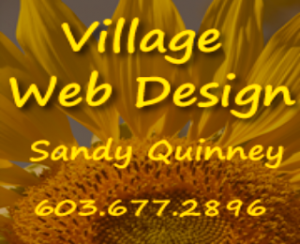 Village Web Design Logo