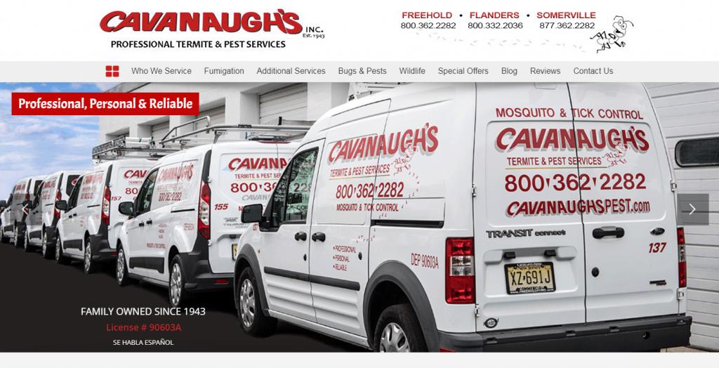 Cavanaugh's Pest