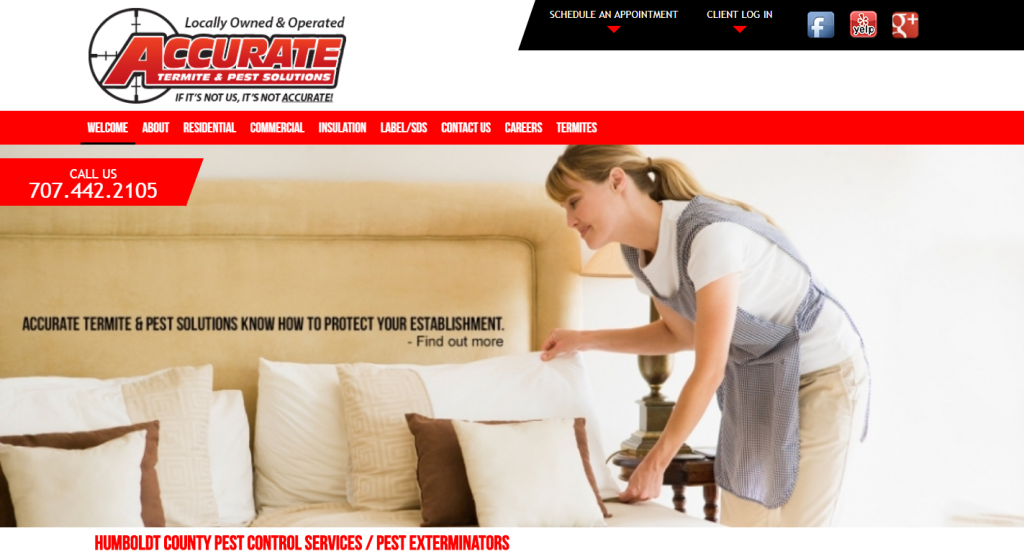 Accurate Termite & Pest Solutions