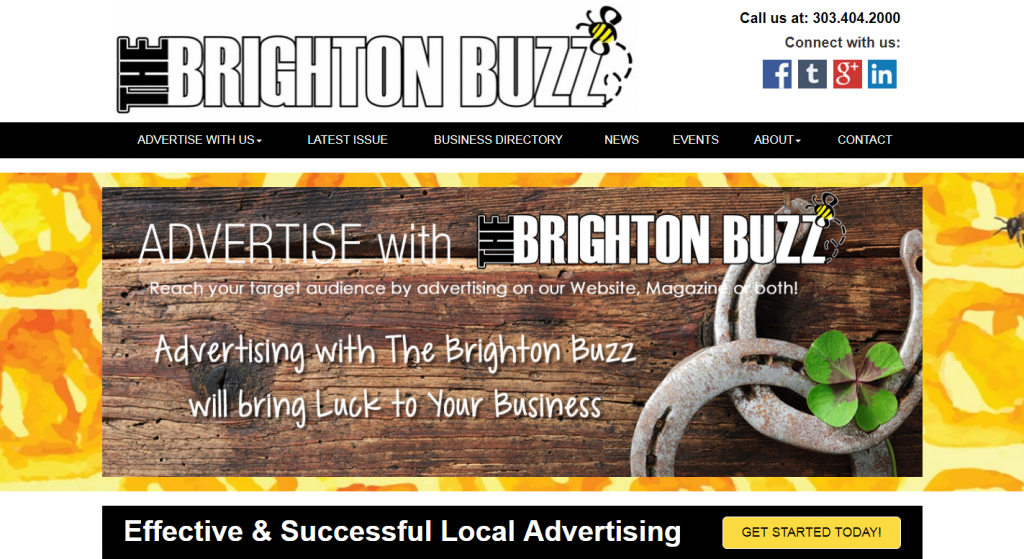 The Brighton Buzz