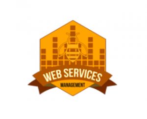 Web Services Management, LLC Logo