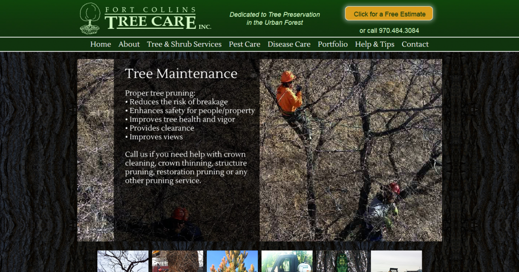 Fort Collins Tree Care