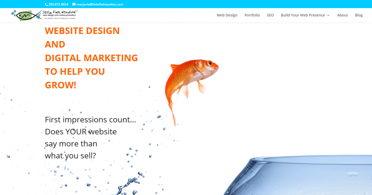 Little Fish Studios, LLC