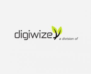 Digiwize Logo