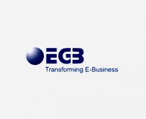 EGB Systems & Solutions Inc Logo