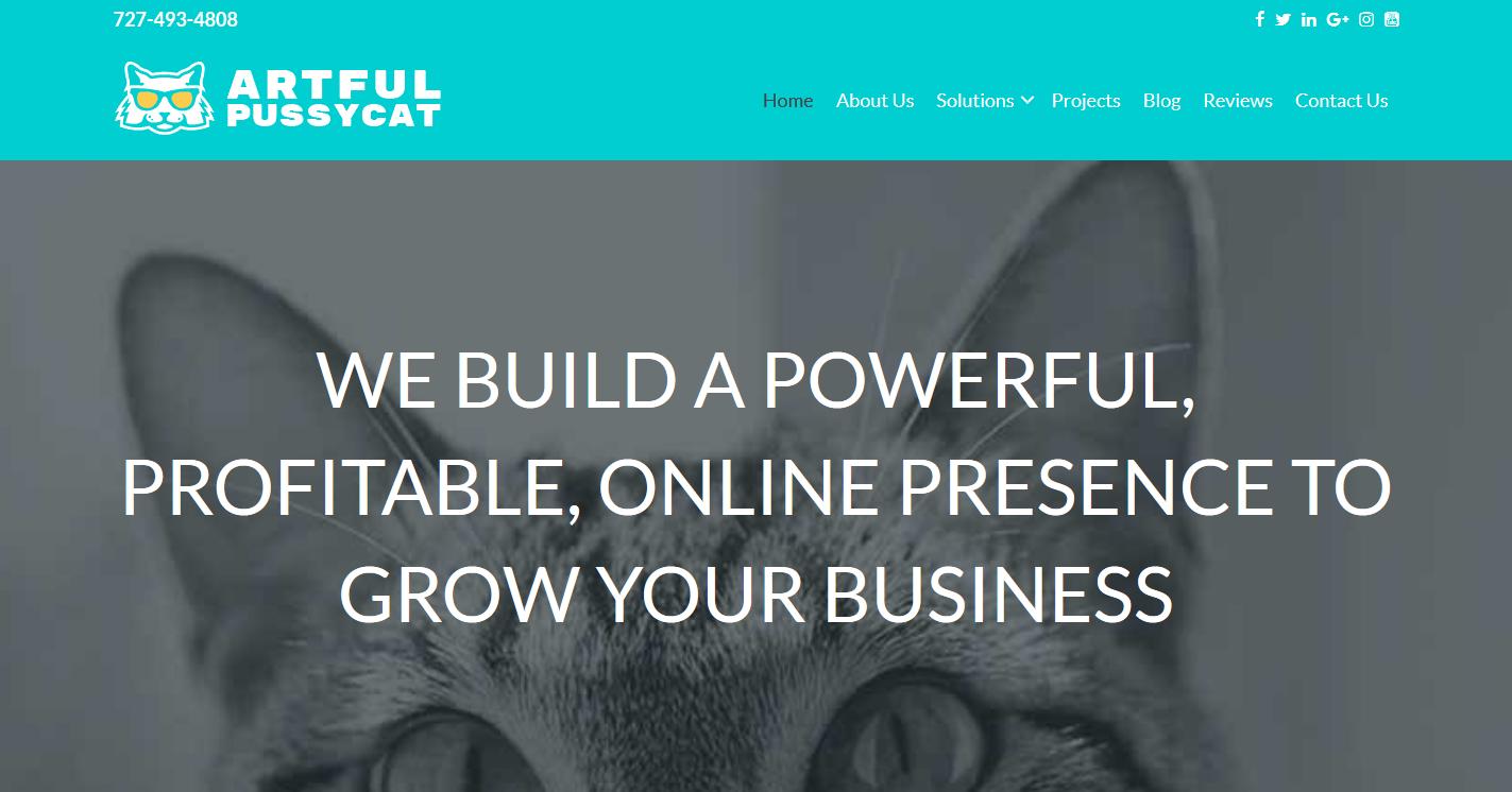 Artful Pussycat Web Solutions