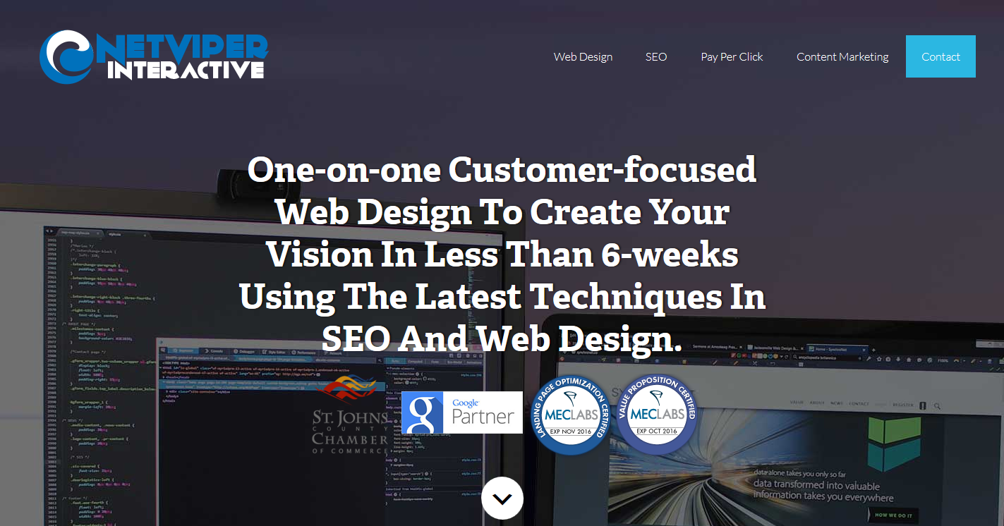 NetViper Interactive